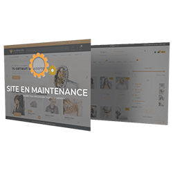 Maintenance Site Internet Toulouse Kit Web