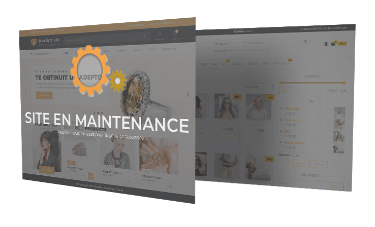 Maintenance Site Web